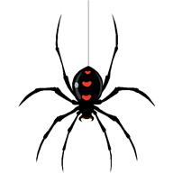 Fear of spiders cure